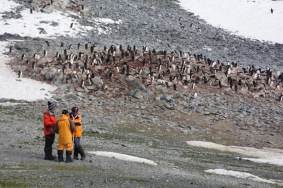 The human impact on the Antarctic Peninsula from the presence of emerging contaminants